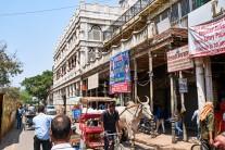 201904-raj-delhi-066